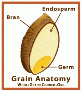 Whole grain diagram